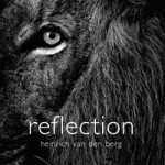 QUICK REVIEW: Reflections
